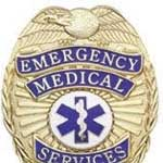 Stock Badges Fire - EMS - Security