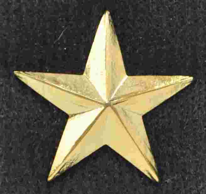 Gold Star Sold in pairs