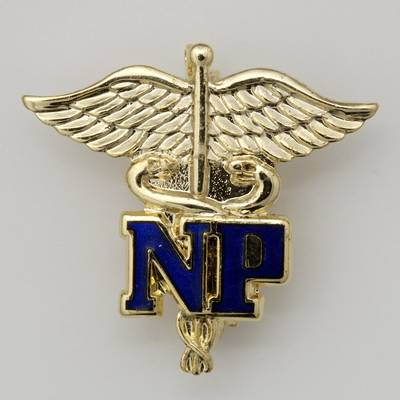 NP Letters on Caduceus Nurse Practitioner Pin NP pin, Nurse Practitioner, Nurse Practitioner on Caduceus